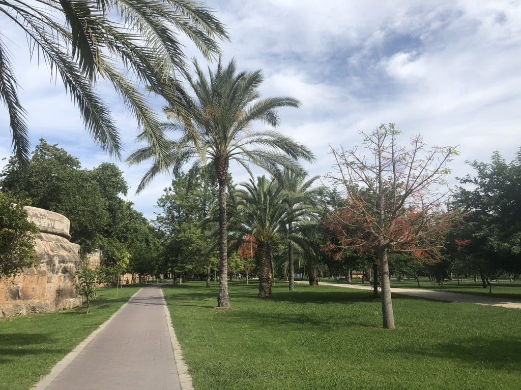 Cycling through the Turia Park is a must in Valencia!